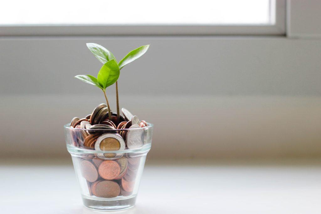 Pflanze wäscht aus Glas voller Münzen